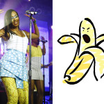 Bananas Outraged at Solange Knowles 'Fit Flop